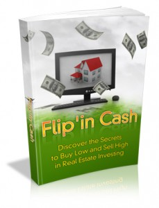 FlipnCash-softbackSml